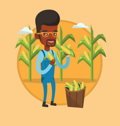farmer collecting corn vector image