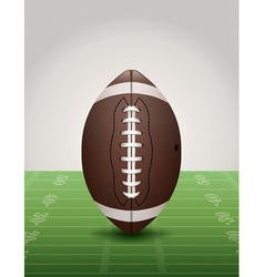 American football and field vector