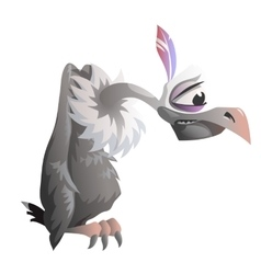 Cartoon vulture on a white background vector image vector image