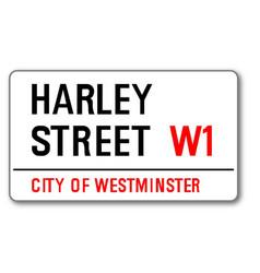 harley street vector image vector image