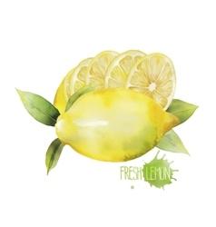 Watercolor lemon vignette vector image