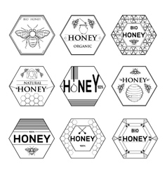Badges and labels graphic design for bee design vector