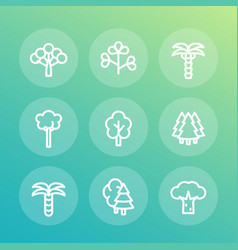 trees line icons set palm fir baobab eucalyptus vector image vector image