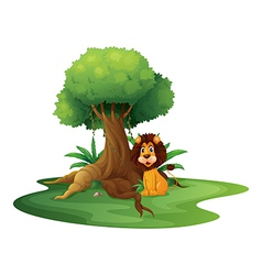 A lion sitting under the big tree vector image