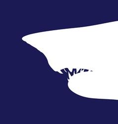 Shark white vector