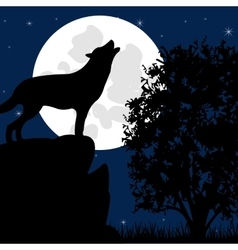 Wolf on stone in the night vector