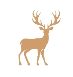 Deer with antlers vector