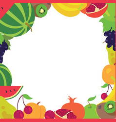 fruit frame on a white background vector image