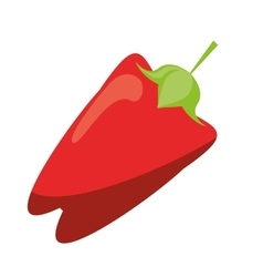 Pepper red vegetable food icon vector