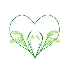 Fresh fern leaves in a heart shape vector