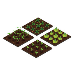 garden in spring isometric icon set vector image vector image