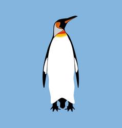 penguin bird vector image
