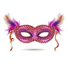 Pink venetian carnival mask with feathers vector