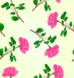 Seamless texture pink rose stem with leaves vector