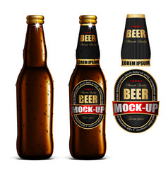 Beer-mock-up-set brown bottle without a label vector