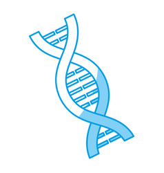 dna chain icon vector image vector image