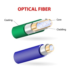 Optical fibers vector