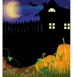 Pumpkins with sprouts and leaves near the house vector image vector image