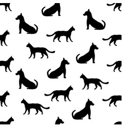 Seamless background with cat and dog vector