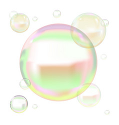 Transparent soap bubbles with reflection vector