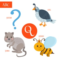 Letter Q Cartoon alphabet for children Quail vector image