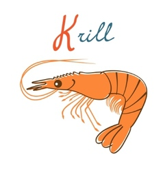 K is for Krill vector image