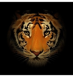 The tiger head vector