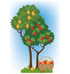 Apple and pear trees vector