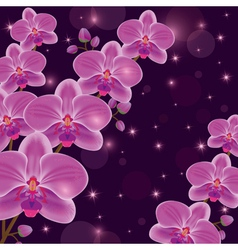 Bright invitation or greeting card with orchids vector image