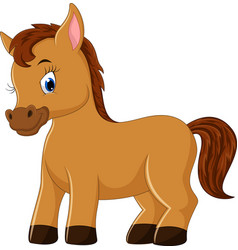 Cute horse cartoon vector