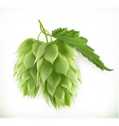 Hop plant 3d icon vector image