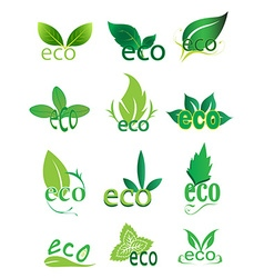 Eco green icons set vector