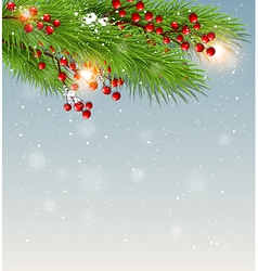 Christmas background with green fir branch vector