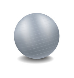 gym ball in grey design with shadow vector image vector image