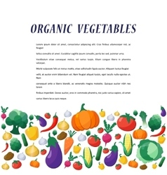 Vegetables Background in Flat Style vector image vector image
