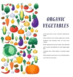 Vegetables Background in Flat Style vector image