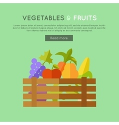 Fruits vegetables banner in flat design vector