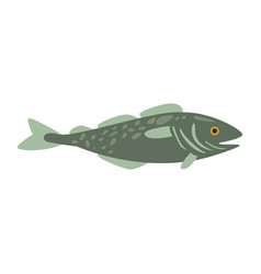 Grey mackerel fish part of mediterranean sea vector