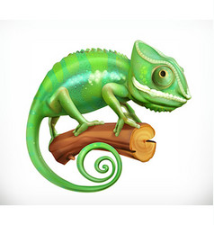 Chameleon 3d icon vector image vector image