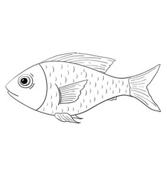 Fish outline doodle vector