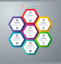 Infographics template 7 options with hexagon vector
