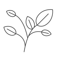 Monochrome silhouette of branches with leaves vector