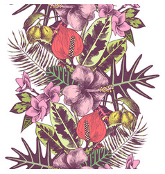 Tropical summer hand drawn seamless border vector