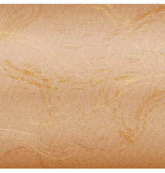 Abstract sand background vector image