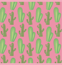 colorful cactus seamless pattern vector image