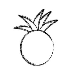contour pineapple fruit icon stock vector image vector image