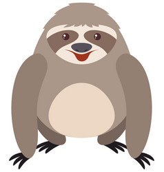 gray sloth with happy face vector image vector image