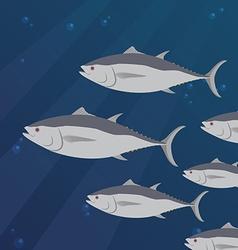 Group of tuna fish swimming vector