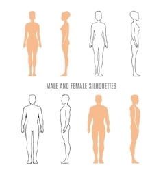 Male and female silhouettes vector image vector image