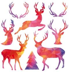 Polygon Christmas deer set vector image vector image
